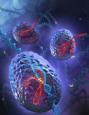 New analytical tool reveals massive DNA damage caused by CRISPR/Cas9 gene editing  CRISPR-spotlight