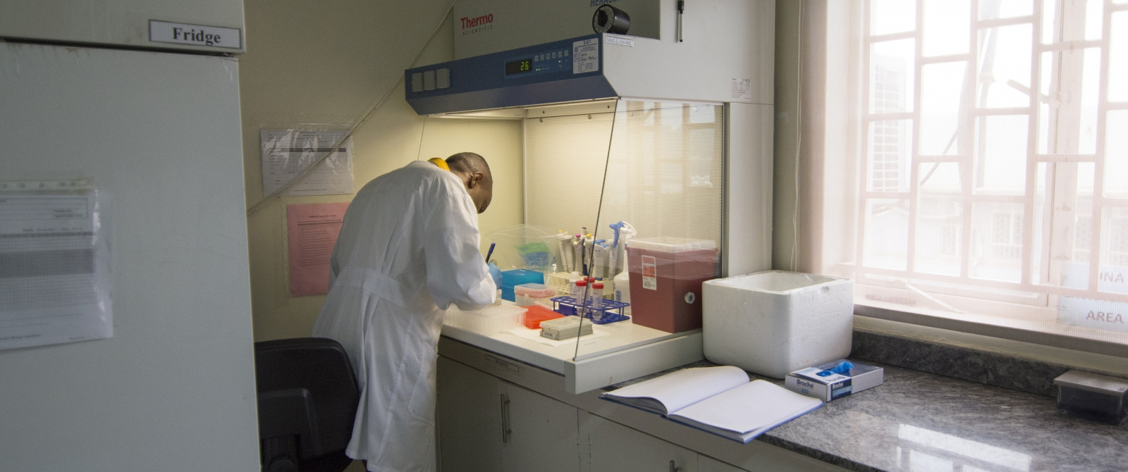 A IBRH3AU technician prepares to extract DNA from saliva samples.