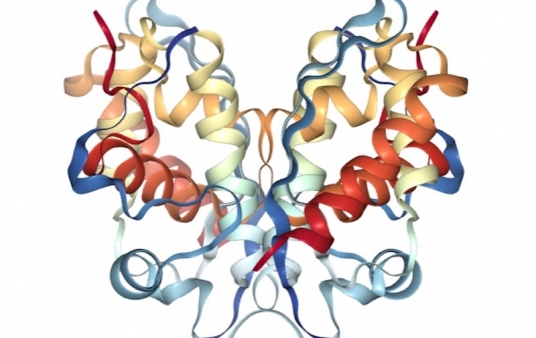 """<a href=""""https://www.rcsb.org/structure/5GJK"""" target=""""_blank"""">RCSB Protein Data Bank</a>"""